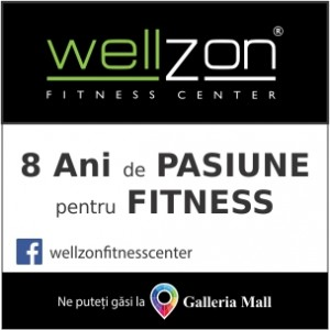 wellzone_web