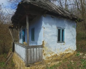 casa parasita 1
