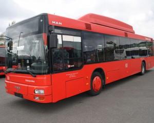 autobuz 2
