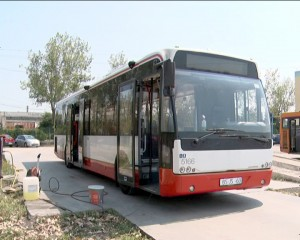 autobuz olanda 1