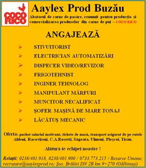 AYLEX2010