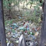 Gunoaie permanente. Pădurea Crâng este năpădită de deșeuri