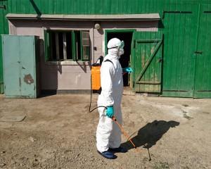 dezinfectie pesta