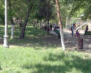 iarba parc