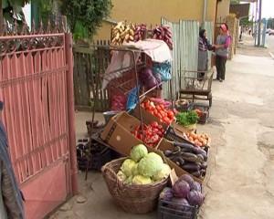legume la poarta