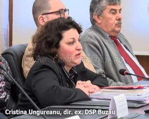 Cristina ungureanu DSP