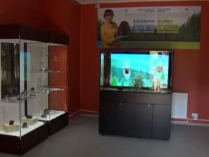 muzeu colti 2