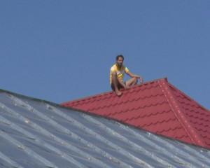tanar pe acoperis 1
