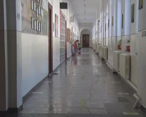 pedagogic 1
