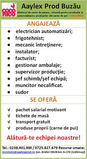 AAYLEX modif 04.11