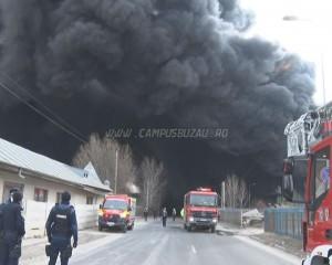 incendiu pogonele greenwee 1