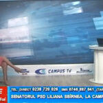 Senatorul PSD Liliana Sbîrnea, la CAMPUS TV
