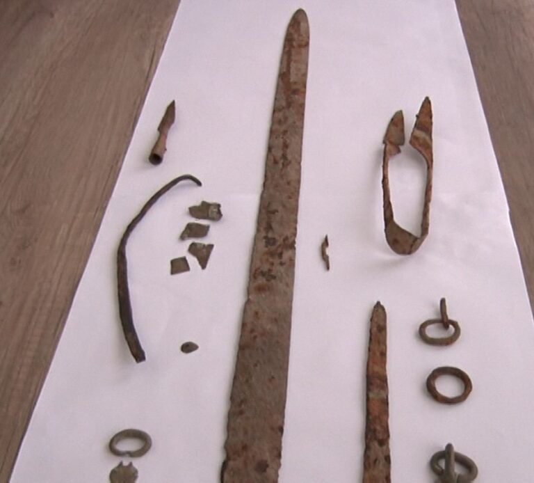 Descoperire din perioada dacică, la Valea Salciei. Piesele, găsite cu ajutorul detectorului de metale