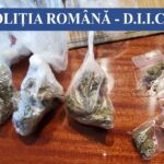 Grupare de traficanți de droguri, destructurată de polițiști. Printre ei erau și minori
