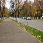 Bulevard problemă. Discuții despre transformarea bulevardului Bălcescu în zonă pietonală permanentă.